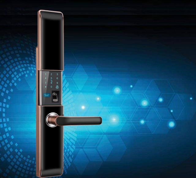 挪威客H30锌合金一握开高档智能锁