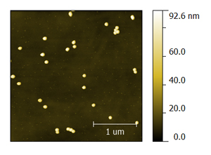100-nm-gold-nanoparticles.jpg