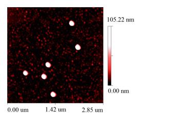 polystyrene-nanoparticles.jpg