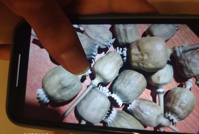 """QQ上的卖家均用""""闪照""""的形式展示了罂粟壳照片,然后快速撤回消息。"""
