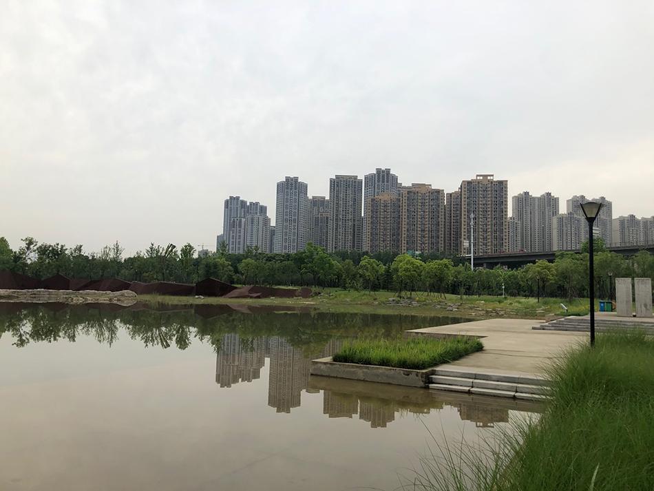 戴家湖公园 本文图片除特别标注外,均为澎湃新闻记者 汤琪 摄