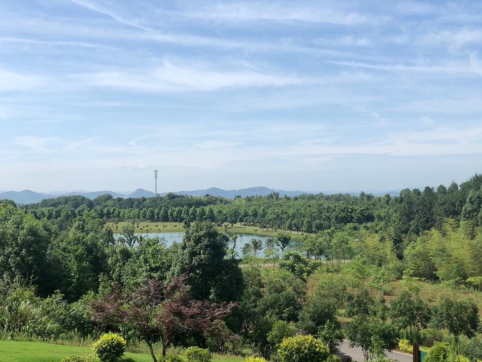 湖北省嘉鱼县官桥镇
