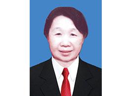 马秀岩  副会长