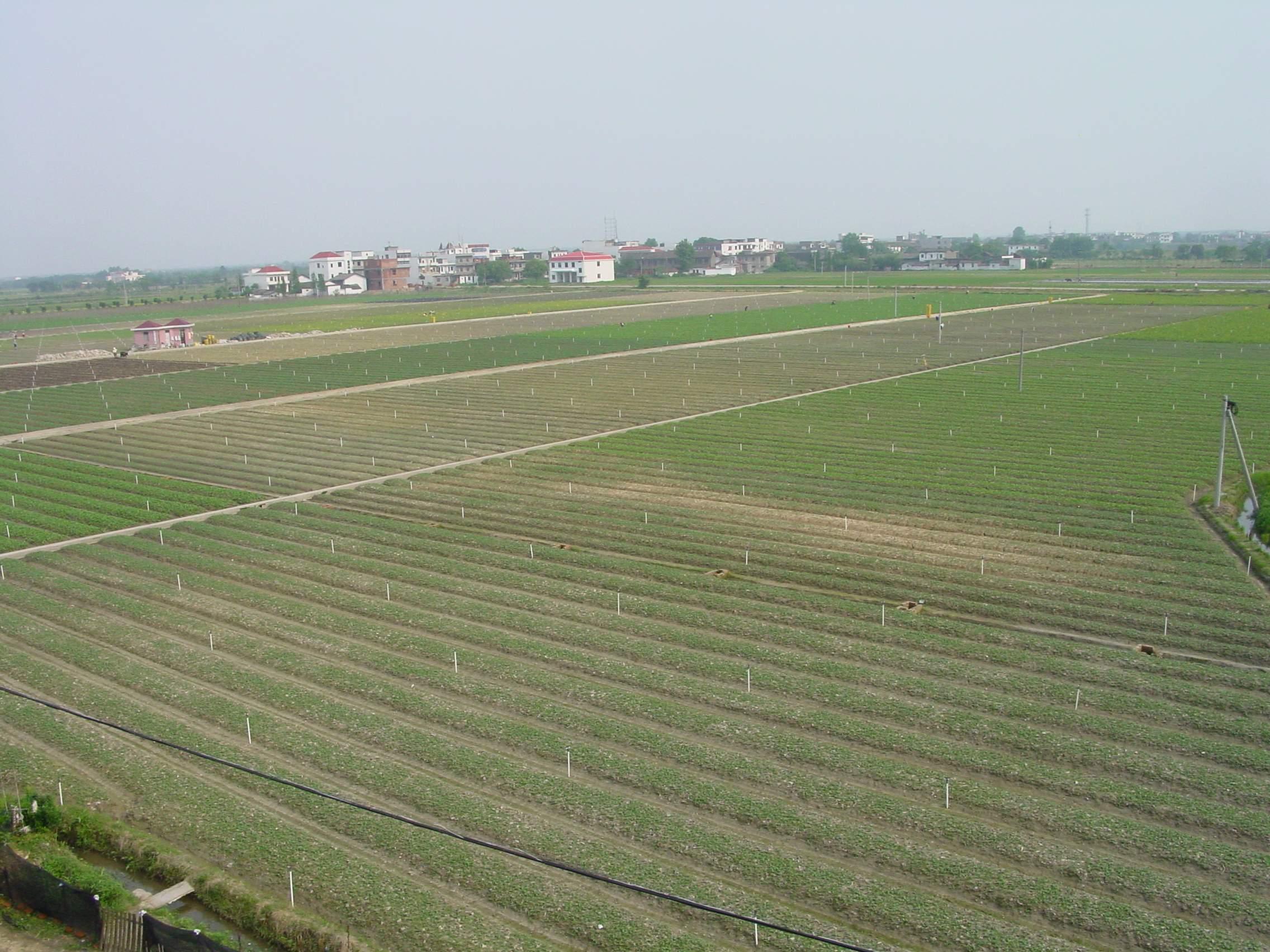 星子县2014年度农业综合土地开发治理项目1标段工程