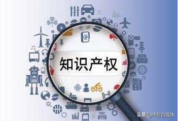 马伟哲:创业,商标知产不可或缺